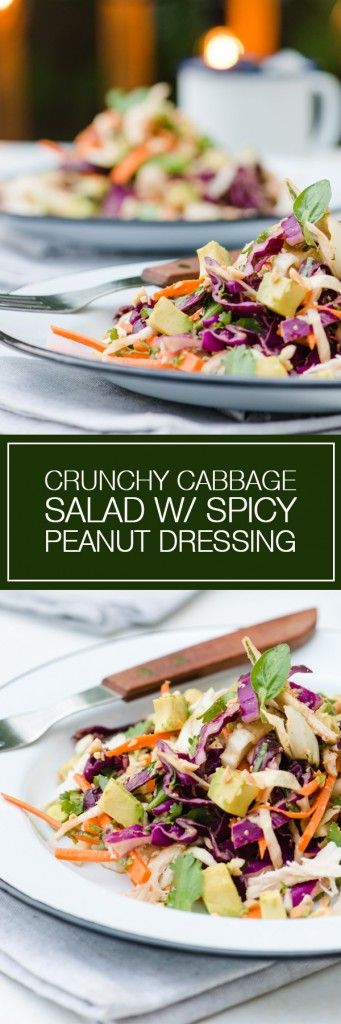 Crunchy Cabbage Salad with Spicy Peanut Dressing - surprisingly hearty and filling!  Loved the Spicy Peanut Dressing.